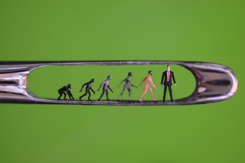 Willard Wigan - Evolution in the Eye of a Needle